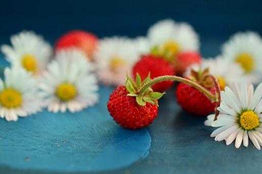 strawberries-800521__340